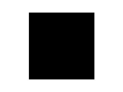 Minicargador